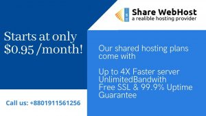 Choose the Best Domain Hosting for Your Website
